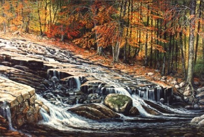 Autumn Cascade oil painting by Frank Wilson