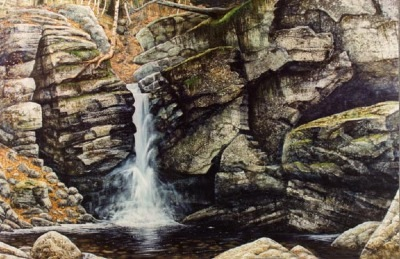 Woodland Falls oil painting by Frank Wilson